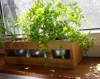 Kitchen Herb Planter Your Herbs Garden