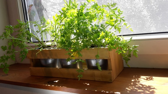 Kitchen Herb Planter Your Herbs Garden By Saujes On Etsy