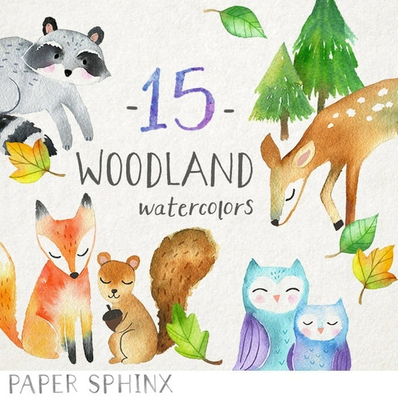 woodland animals clipart watercolor forest animals clip