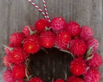 DRIED FLOWER ORNAMENT with red globe amaranth