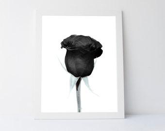 Black rose print, printable wall art, dark wall art, printable flower, dark art,dark rose,black flower print,black wall art,black wall decor
