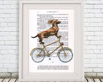 Daschund on bicycle Print, Boxer Dog, Digital Pantings by Coco de Paris
