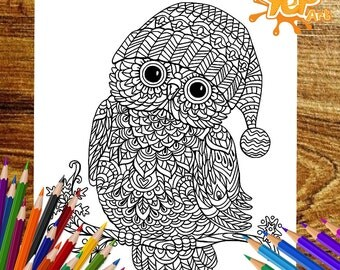 Cool Beautiful Owl Adult Coloring Page OWL Book Digital