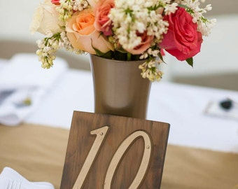 Rustic Wooden Table Numbers (set of 10)