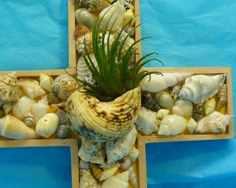 Yellow shell cross with air plant, seashell cross, shell wall hanging, nautical decor, beach decor ,wood cross with shells