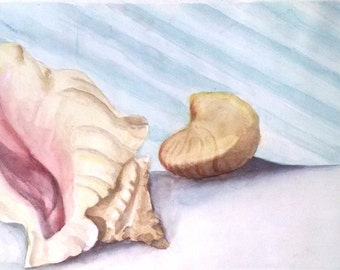Original Vintage Watercolor Seashell Painting