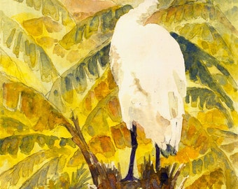 2004 White Egret watercolor painting print, done by seller, signed
