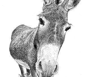 ORIGINAL: Donkey - Pen & Ink Original Drawing
