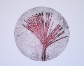 Untitled (red and black pine needles)