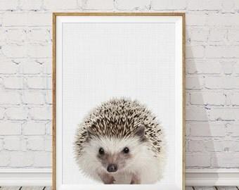 Hedgehog Print, Nursery Animal Print, Woodland Nursery Print, Kids Large Poster, Modern Wall Decor, Safari Wall Decor, Nursery Art