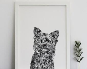 Yorkshire Terrier Print