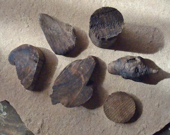 Desert Wood Dark Stained Form Shaped Pieces for Crafts Assemblage Mixed Media Supplies Natural Organic Found Object