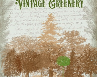 Clipart - 24 vintage trees and greenery, digital clip art and photoshop brushes Megapack