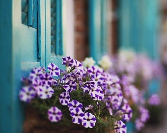 New Orleans French Quarter Flower Baskets Photograph. Fine Art Print. Purple Blue Wall Art Home Decor 8x10, 11x14, 16x20, 20x24