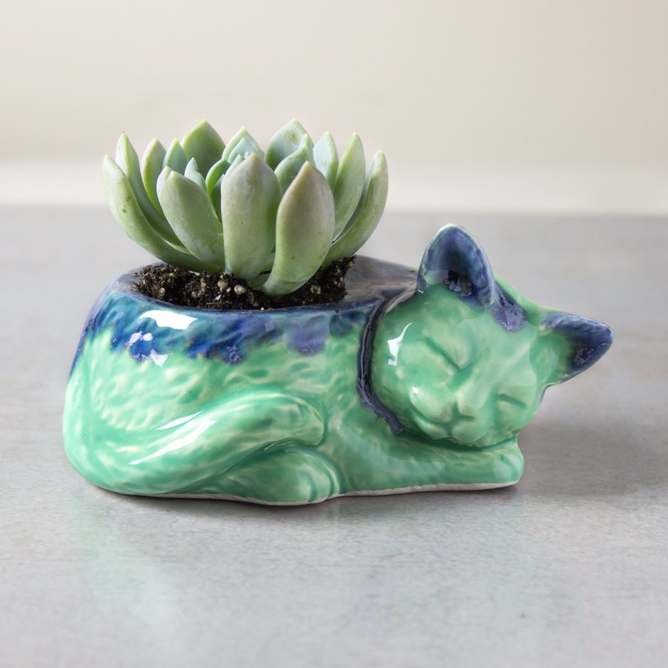 ceramic plant pots in stock kitty planter ceramic no concrete by blueroompottery 30025