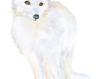 Arctic Fox Watercolor Painting 5 x 7 Fine Art Giclee Reproduction