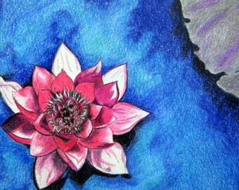 Lotus Flower Pencil color Original on Paper, Size 7.5x 11.5 DOUBLE MATTED TO 14X18 Floral Kitchen Wall Decor, Pinks Purple Blue and Green