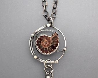 Ammonite Vortex 3