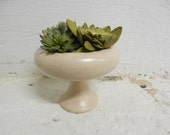 Mid Century Small Planter with Tulip Base by Haeger