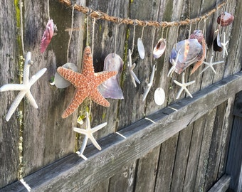 Deluxe Assortment Natural Scallop Oyster Capiz Starfish Rustic Rope Garland Coastal DIY Decorating Mantle Decor Holiday Seasonal SEA Display