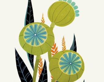 Olive & Teal Poppy Pods - Fine Art Print 11x14