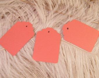 Gift Tags / Dark Coral / Medium Size Cardstock Price tags / Hang Tags / 100 Blank  DIY Wedding Tags