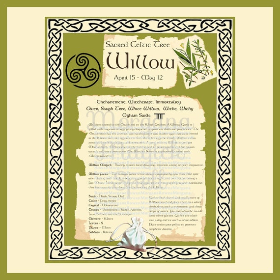 WILLOW CELTIC SACRED Tree - Digital Download, Book of Shadows Page,Grimoire, Spells, White Magick, Wicca, Witchcraft, Herb Magic