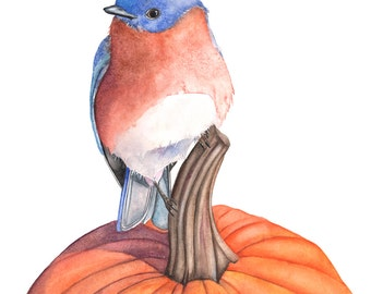 Bluebird original watercolor painting, A3 size, Original bluebird watercolor painting, Original watercolor, bluebird art
