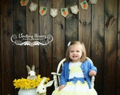 Easter Banner, Easter Decor, Happy Easter, Easter Burlap, Easter Bunny, Carrot