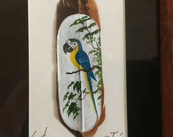 Handpainted Blue and Yellow Macaw on a Feather Signed Picture from Costa Rica