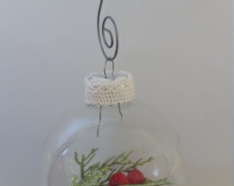 Holly Berries - Glass Ball Holiday Ornament