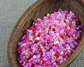 20g Czech seed beads Mixed pink seed beads MIX-1 Czech rocailles Seed bead soup 8/0 seed beads