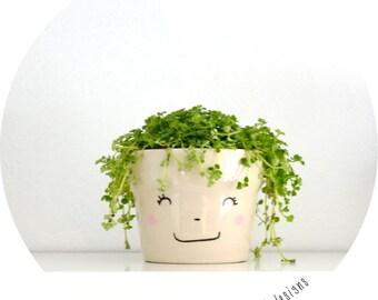 smiling flowerpot - MIM