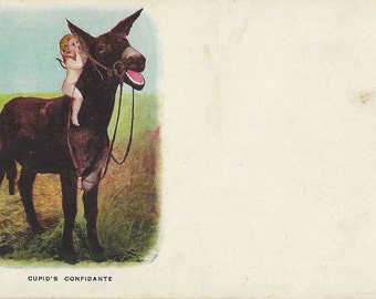 Love on the Bray-in - Antique 1900s Unsigned Cupid and Donkey Comic Postcard