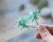 Succulent hair clips - succulent wedding gift - succulent headpiece - tropical hair clips - floral hair clips - mint hair clips - summer