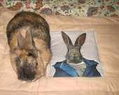 quilted bunny rabbit bed
