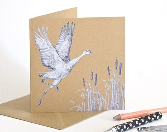 Sandhill Crane - Recycled Greetings Card