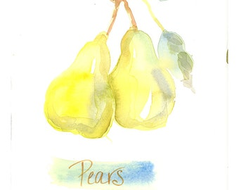 Pear Botanical