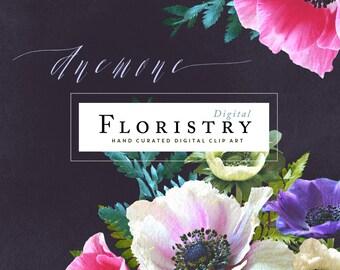 Digital Flower Clip Art - Anemone