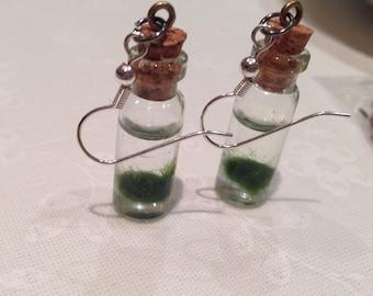 Marimo Moss Ball Living Earrings
