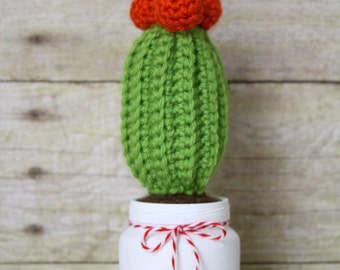 Small Cactus - Crocheted Succulent