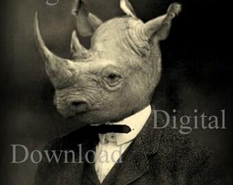 Mr. Rhino Digital Download Photo