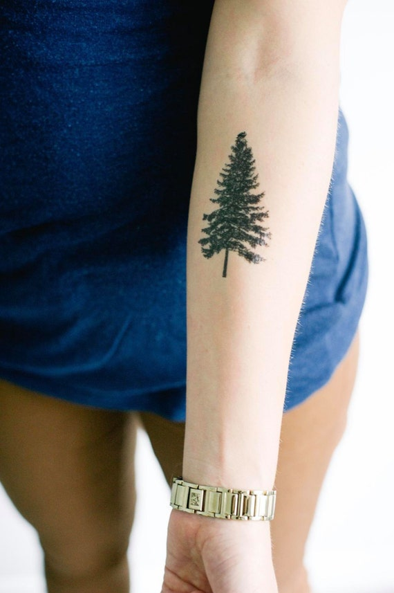 2 pine tree temporary tattoos smashtat for Evergreen tree tattoo
