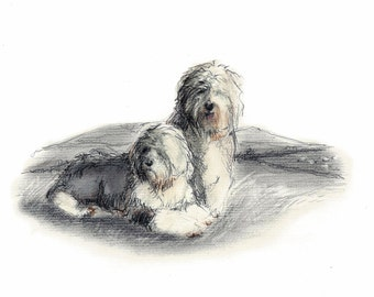 Old English Sheepdog Vintage Style Print