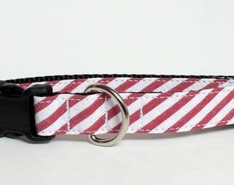 Red Seersucker Wide Stripe Dog Collar