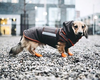 Dog Winter Coat with neck warmer, hood and underbelly protection - Waterproof / Fleece dog clothes - Custom made for your dog