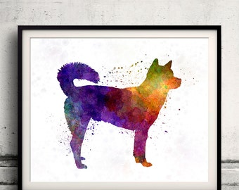 Kishu in watercolor - Fine Art Print Glicee Poster Decor Home Watercolor Gift Illustration dog - SKU 1348