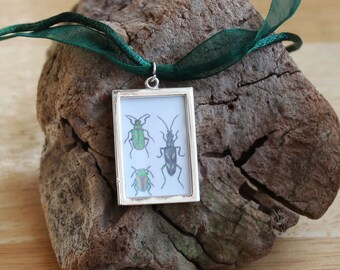 Beetle Necklace, Beetles Miniature Picture Frame Pendant, Organza Cord