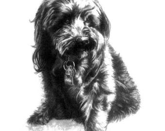 Dog Sketch Pet Portrait Print 8x10