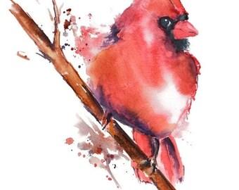 Cardinal Watercolor Art Print Nancy Knight, Watercolor Painting, Bird Watercolor, Bird Art Print, Cardinal Painting,Bird Wall Art,Bird Print